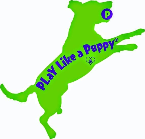 Estate Planning for Pet Owners and COVID-19 Advice for Owners of Pet-Related Businesses, PLaY Like a Puppy podcast, 5.25.20
